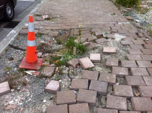 A former footpath.